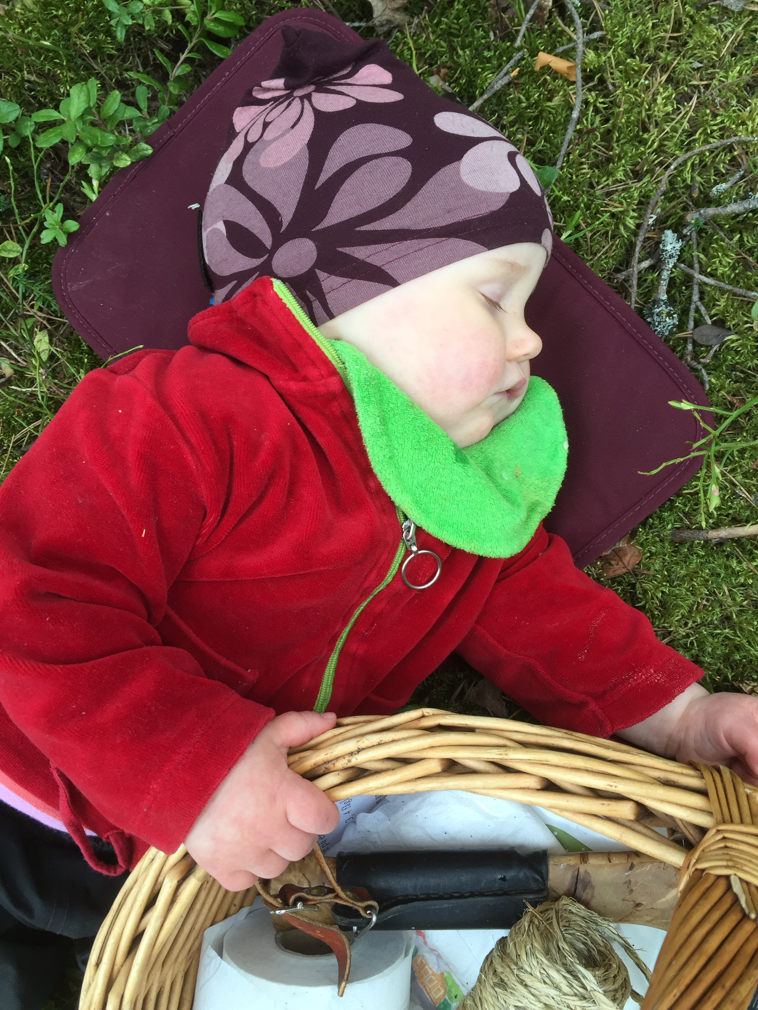 sova skogen barn knopp knytte mulle