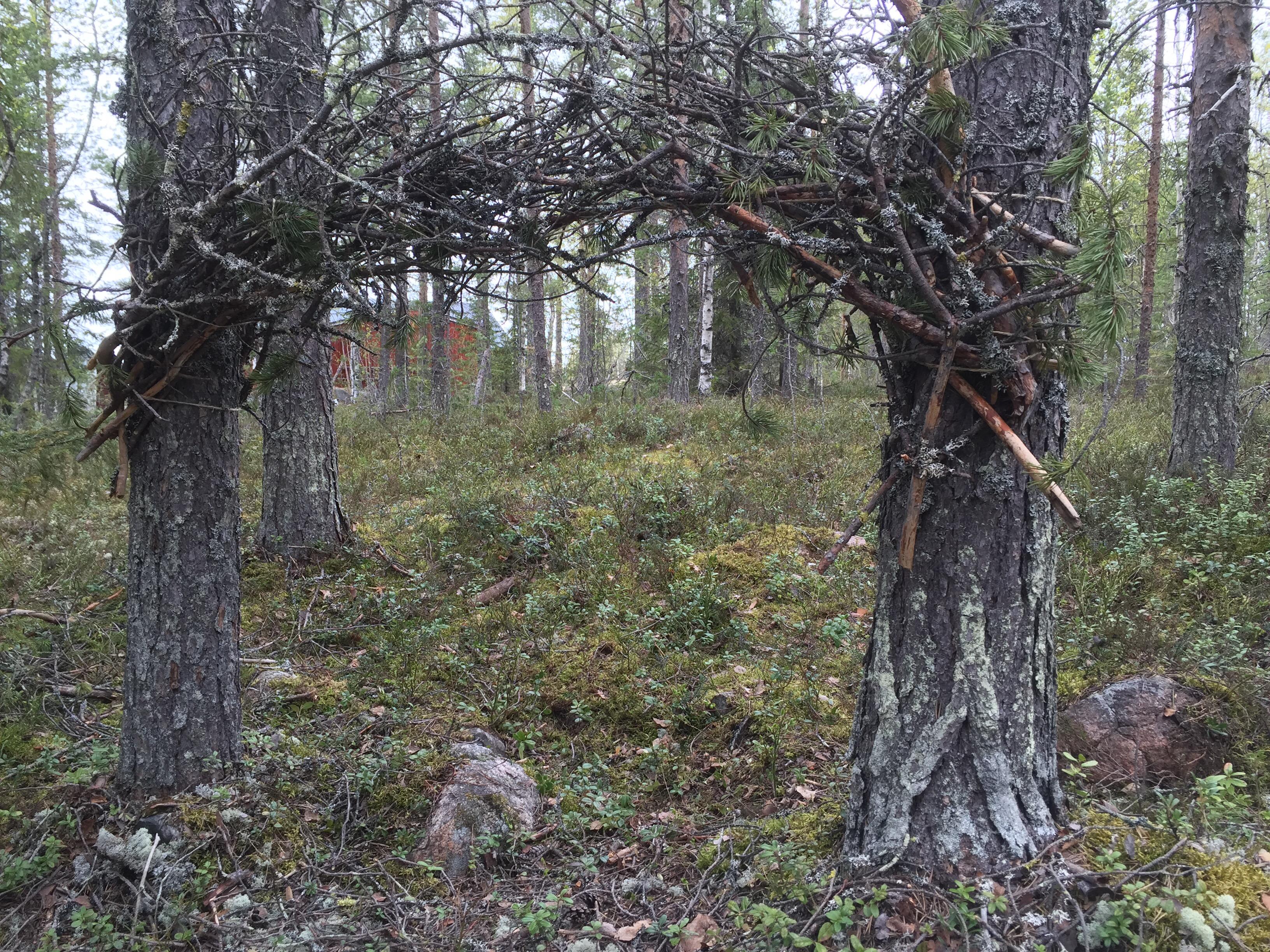 portal skogen mulle knopp knytte