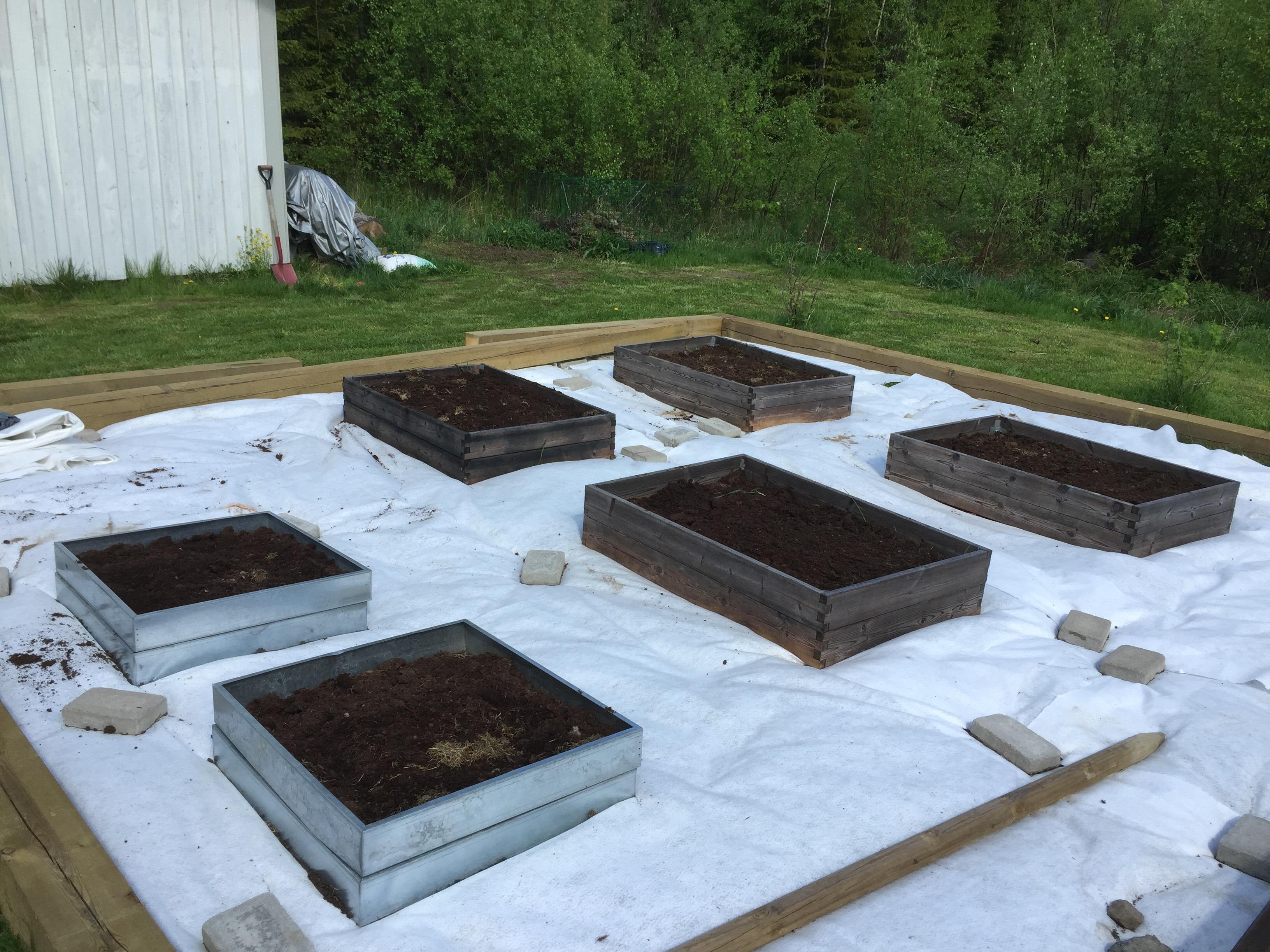 pallkragar hasselfors stockar odling trädgård markduk