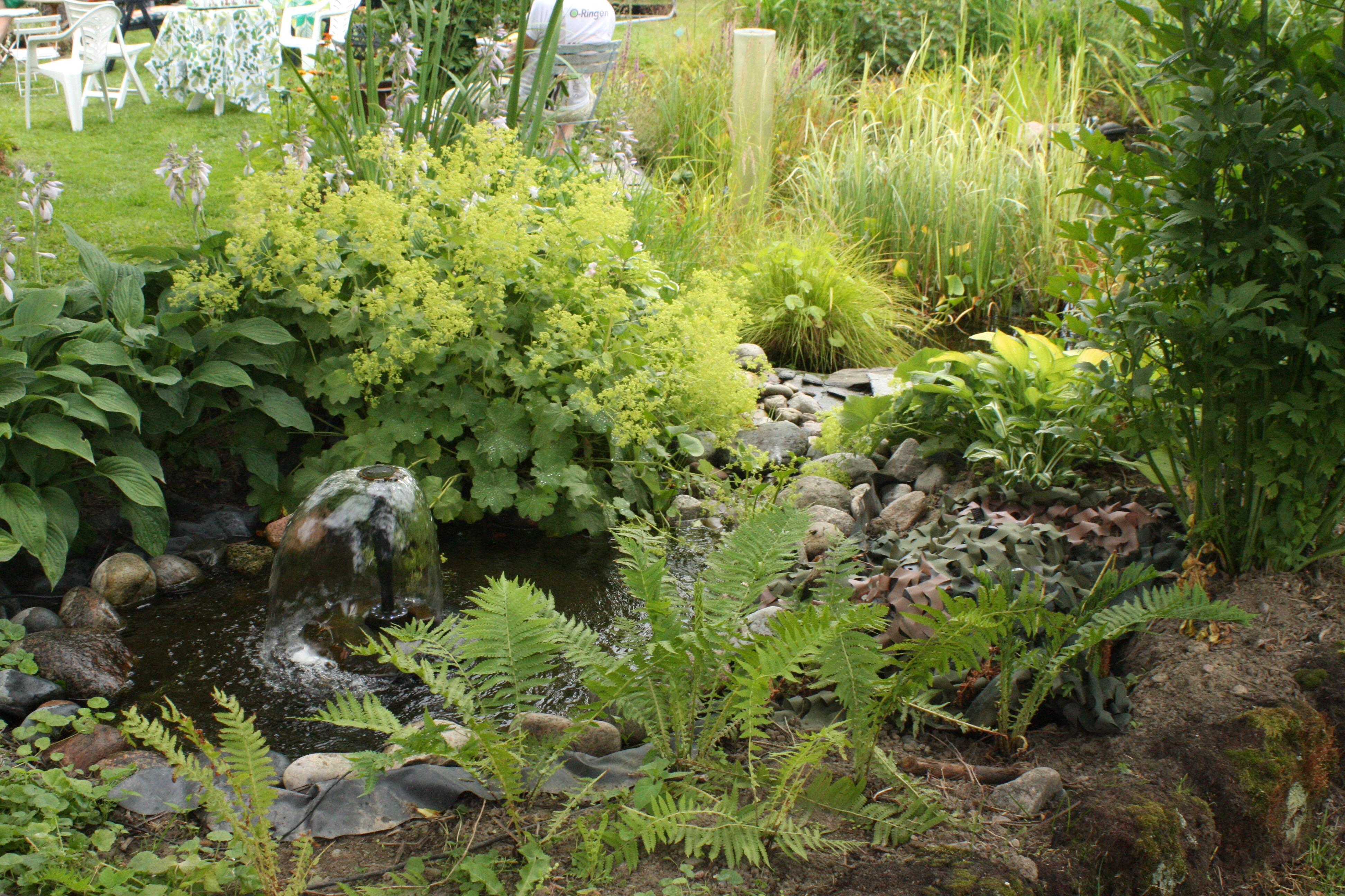 garden trädgård fontän