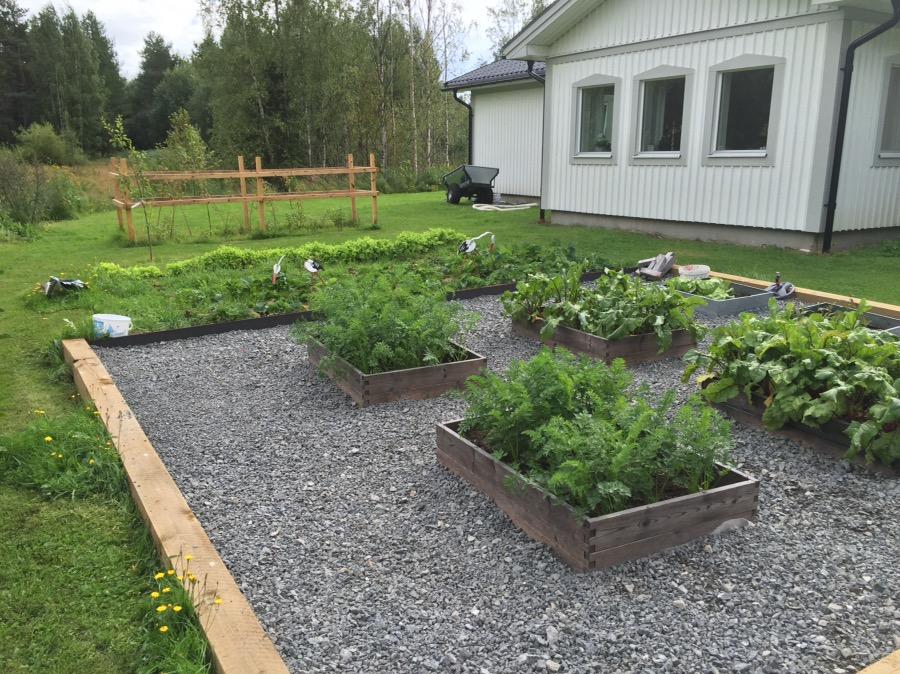 pallkragar trädgård