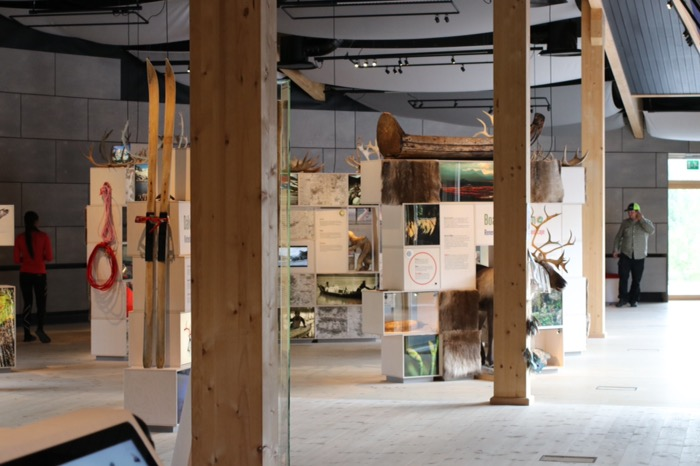 Naturum Laponia utställning